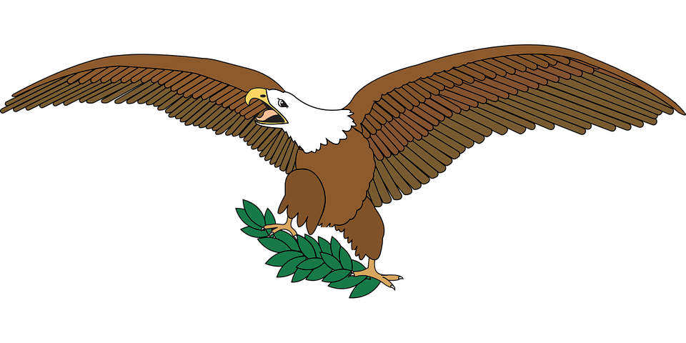 eagle with olive branch.png